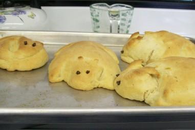 Bread bunnies!