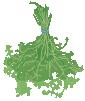 motif plant herb Marjoram bundle