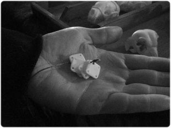 Tiny bone tablets for weaving silk