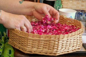 Roses to dry
